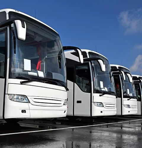 Fleet of Coaches